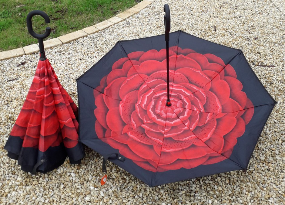 interieur grosse fleur rouge,extérieur noir